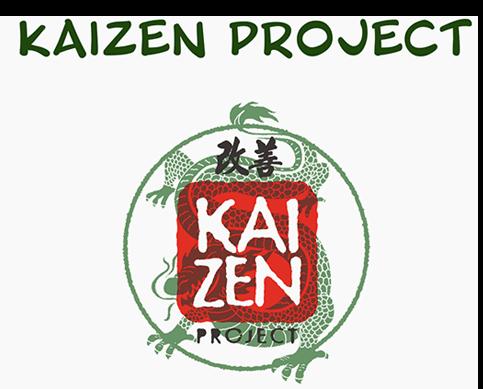 Kaizen Project - Energy healing